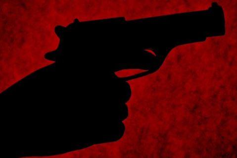 My Bharat News - Article gun